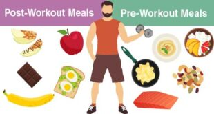 Before Workout diet paln